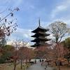 東寺の2020秋期特別公開に行ってきました(京都府京都市)2020/11/15