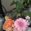 めがねとお花