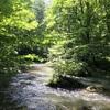 【青森】涼を求めて奥入瀬渓流へ