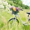 流産手術後22日目 自転車に乗りすぎて不正出血?生理再開?