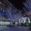 博多駅 クリスマス イルミネーション|博多区 エリア 日記
