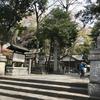 卯月恒例うさぎ神社