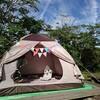 始まりのキャンプ《回顧録》