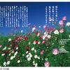 幸せの章 『晴れたら楽しい 雨が降っても楽しい』 ご紹介~Taoist Sayings 前向きに生きる! 30の言葉 早島妙瑞の言葉より