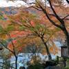 すかいのぶらり温泉♨️紀行 #3 / 早川町営 奈良田の里温泉 女帝の湯