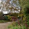 神戸への一泊二日の講演の旅 (2)・・・風雅舎の庭
