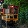 京都嵐山を観光。竹林とか嵯峨野トロッコ列車とか保津川下りとか