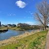 大落古利根川を歩く 杉戸・清地橋から河川起点まで