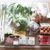 栄養たっぷり!旬の野菜で美肌とダイエット|らでぃっしゅぼーやのお試しセットが56%OFF