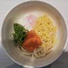 魚べい『温玉明太うどん』の画像・値段・味を紹介!つゆ無しタイプ?