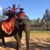 【カンボジア女子一人旅】バイヨン寺院で象乗り体験★