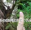屋久島の森が教えてくれたこと