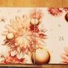 クラランスのフランス版アドベントカレンダーを買ったよん♡使用感:随時更新中