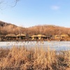 韓国民俗村に行ってきました。