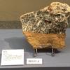 特別展「石は地球のワンダー 〜鉱物と化石に魅せられた2人のコレクション〜」