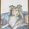 3月の色鉛筆画