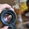 フィルムカメラと銘玉Carl Zeiss Planar T* 50㎜ F/1.4 を手に入れた喜び