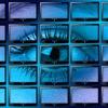 監視社会化する上での問題点