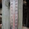 冷夏の様な・・・・