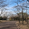 12月の荒子川公園