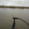 ブラックバス釣行記 西の湖 2012年5月4日