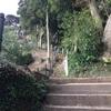 鎌倉 ハイキング  天園ハイキングコース