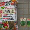 9/22 小松菜、春菊 0日目