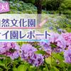 ひと目10万本!西日本最大の舞鶴自然文化園のアジサイ園レポート