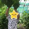 子育てと農業の相性について