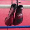 ボクシング WBC世界バンタム級タイトルマッチ 山中慎介VSカルロス・カールソンを見て