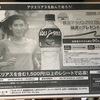 まだまだチャンスはある「横浜マラソン」