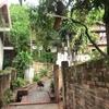 ルアンパバーンにある安くてリゾート気分満点のマッサージ屋さん、レモングラス サウナ アンド トラディショナル マッサージに行ってみました。(ルアンパバーン旅行記15)