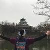 大阪城お花見ウォーキング5km