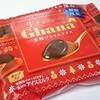 ロッテ「ガーナ生チョコレート芳醇プラリネアイス」