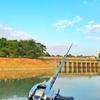 【香港釣り情報まとめ】釣り堀じゃなくてもルアーで淡水魚が釣れるポイント・ライセンスの取得方法。