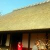 開成町 瀬戸屋敷のひなまつり&曽我梅まつりで春満喫!