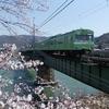 JR奈良線宇治川橋梁再訪、桜咲く