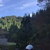 丹波広域基幹林道のハズが…