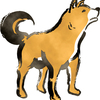 犬は、やはりホモサピエンスの最初の友達、パートナーのようです。