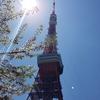 4月17日(水)こんにちは☺『桜と東京タワー③』です♪
