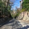 坂道探訪 国分寺崖線の坂道・世田谷(3)