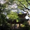 功山寺(こうざんじ)|歴史の表舞台となった国宝寺