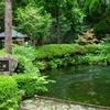 水の国熊本の美味しい水を飲めるおすすめスポットはここ