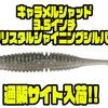 【一誠】中央漁具限定カラー「キャラメルシャッド 3.5インチ クリスタルシャイニングシルバー」通販サイト入荷!