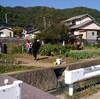 山梨の田舎で枝豆取り、そして長野の新そばとか