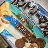 不二家:カントリーマアム:バニラ チョコココナッツ