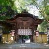徳島の秘境・祖谷へ衝動的ひとり旅