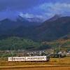飯田線・追憶のED62形 1994年のナゲーのプチフーケー