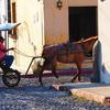 アンティグアの街角はいつまでも美しくーグアテマラの世界遺産より