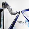 アルパ奏者Edmar Castanedaをもっと日本に広めたい~ワールドミュージック系ジャズ